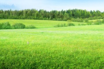 Are You Looking For Residential Plots?